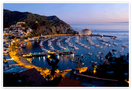 Catalina Island Wonders